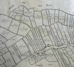 Newtown Linford, 1773